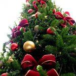 Новогодние елки вредят здоровью