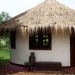 Как построить дом из подножных материалов. Часть 4