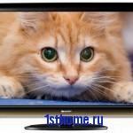 Как выбрать ЖК телевизор.