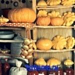 Совет: как хранить овощи в квартире
