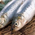 Как выбрать рыбу правильно?