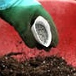 Виды удобрений и как их правильно применить