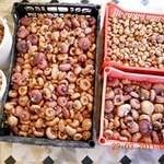 Как правильно зимой хранить луковицы гладиолусов?