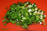 Зеленый лук ш8