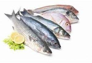 ТОП-10 самых полезных сортов рыб